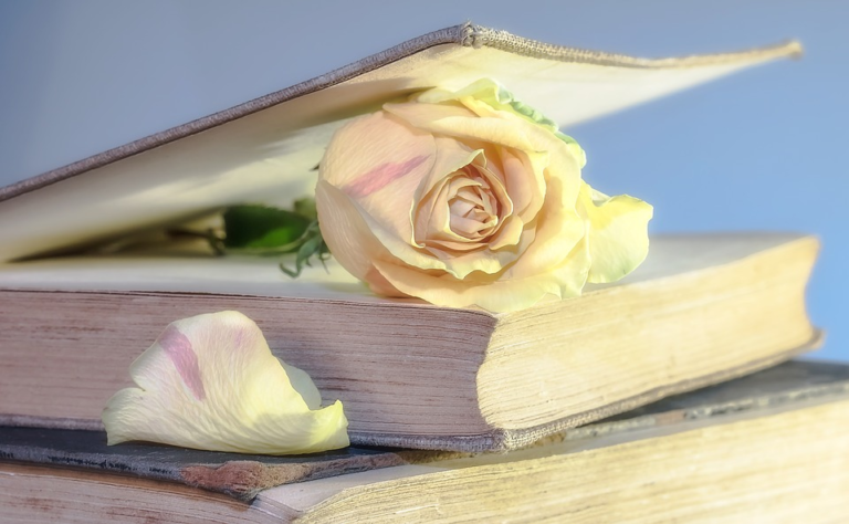 libros de mujer