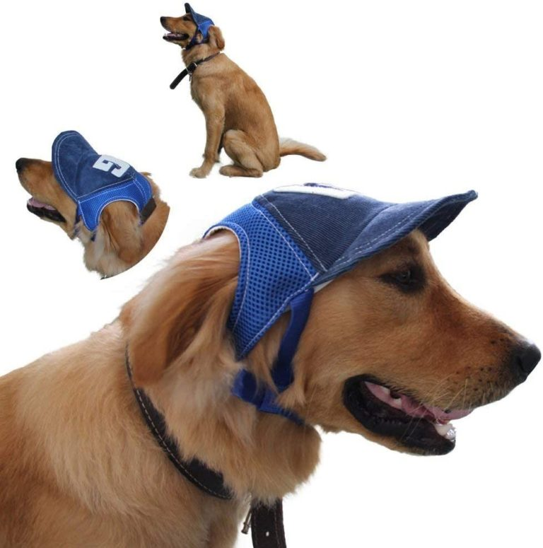 gorra a tu perro